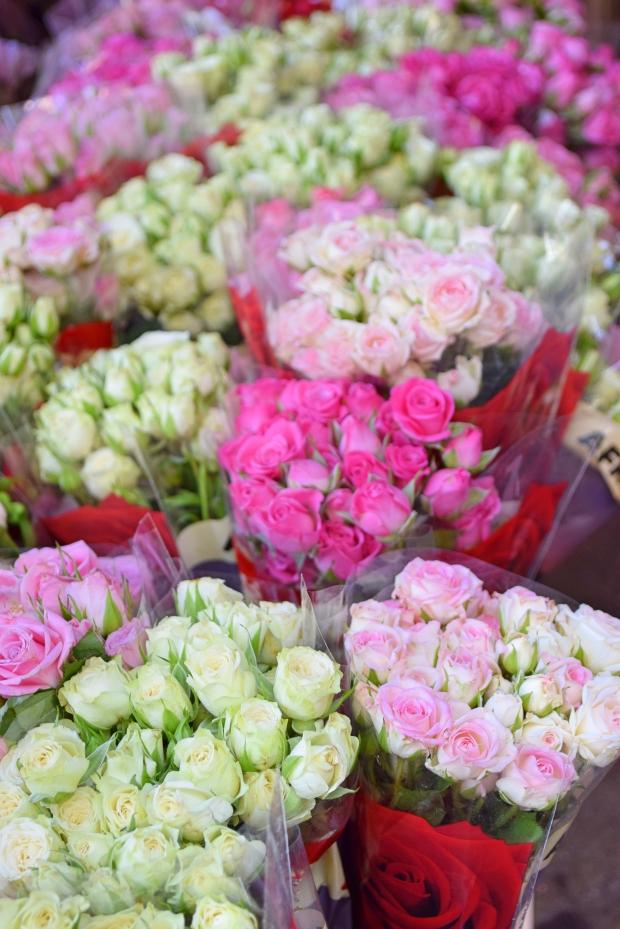 petitemod-roses (3)