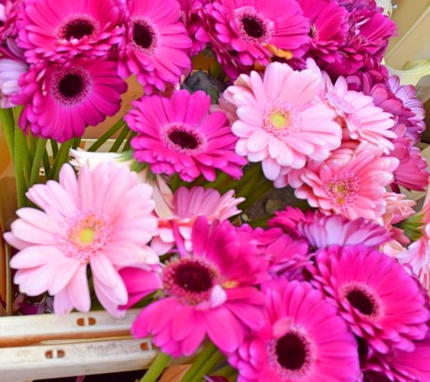 petitemod-roses (4)