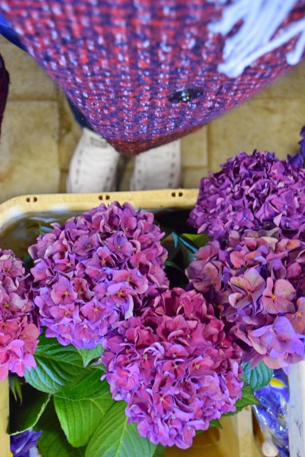 petitemod-roses (7)
