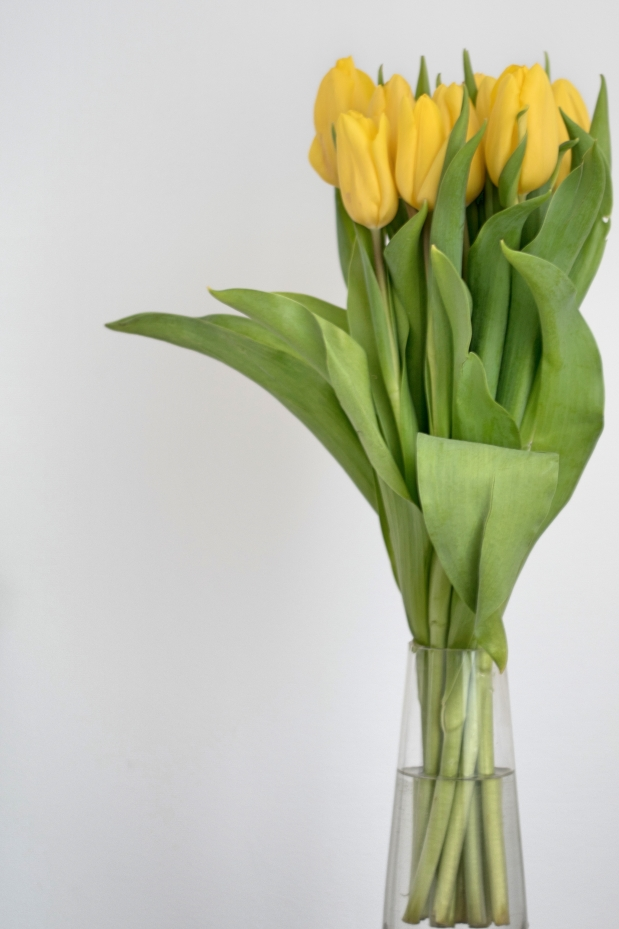 petitemod-birthday-girl-tulips