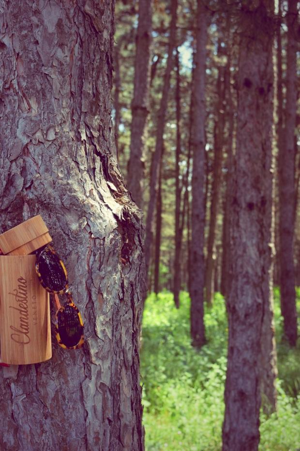 clandestino-wood-sunglasses-petitemod